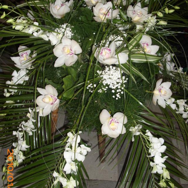 Wieniec pogrzebowy z białymi storczykami
